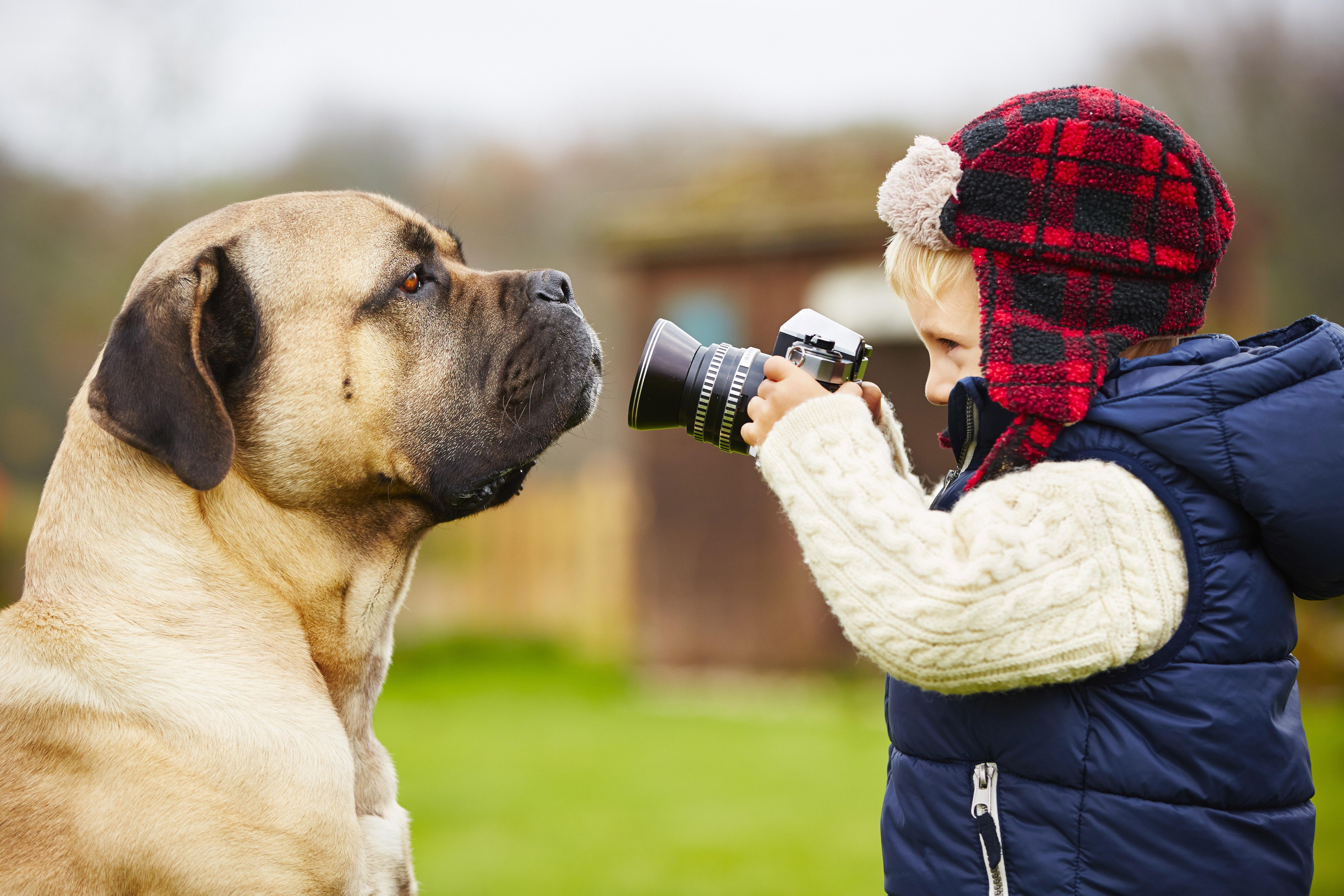 So gelingt dir das perfekte Hundefoto.